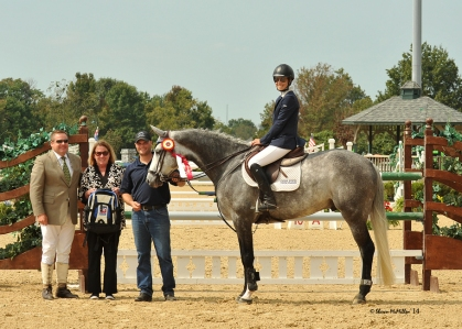 Vavoom Young Jumper Reserve Champion