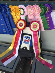 Young Jumper Awards